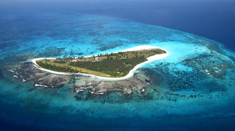 Aerial View of Bird Island.i